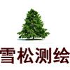 安徽雪松地理信息技术有限公司