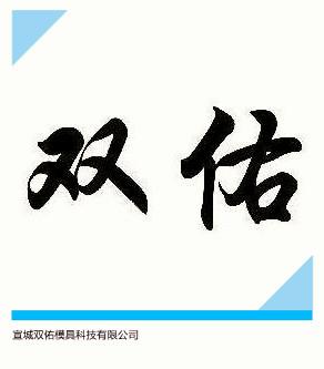 宣城双佑模具科技有限公司